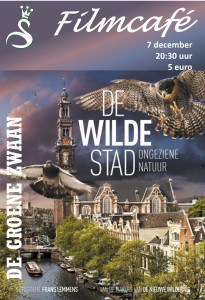 Filmcafé: De Wilde Stad @ De Groene Zwaan | De Rijp | Noord-Holland | Nederland